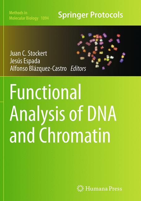 Functional Analysis of DNA and Chromatin als Buch (gebunden)