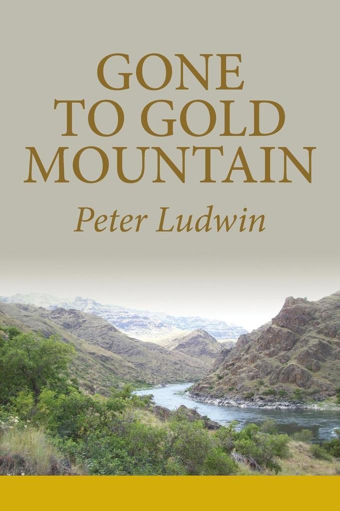 Gone To Gold Mountain als Taschenbuch von Peter...
