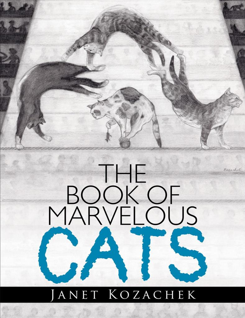 The Book of Marvelous Cats als eBook Download v...