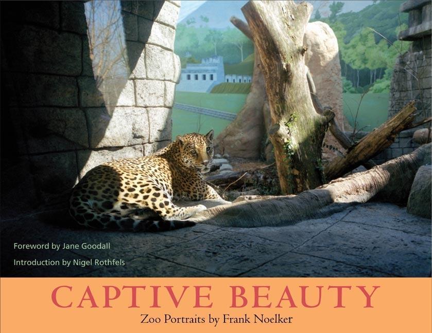 Captive Beauty: Zoo Portraits als Taschenbuch