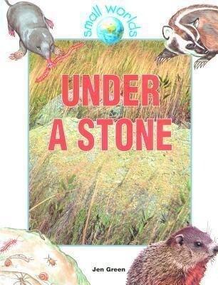 Under a Stone als Buch
