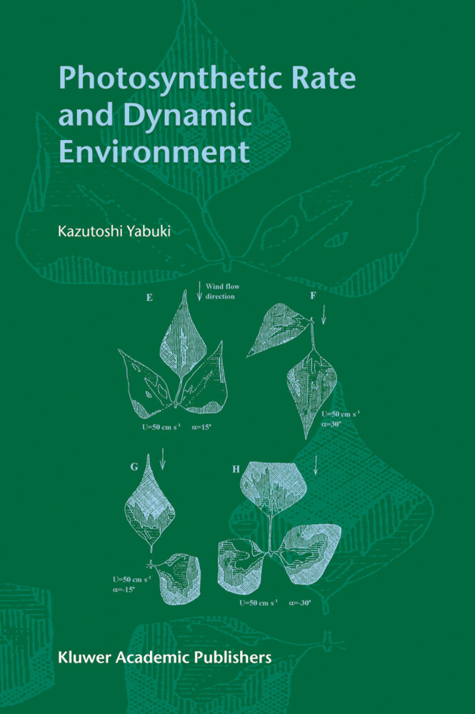 Photosynthetic Rate and Dynamic Environment als Buch