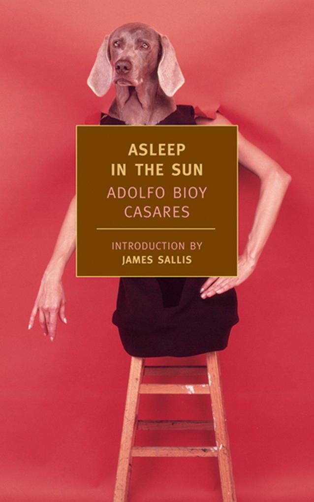 Asleep in the Sun als Taschenbuch