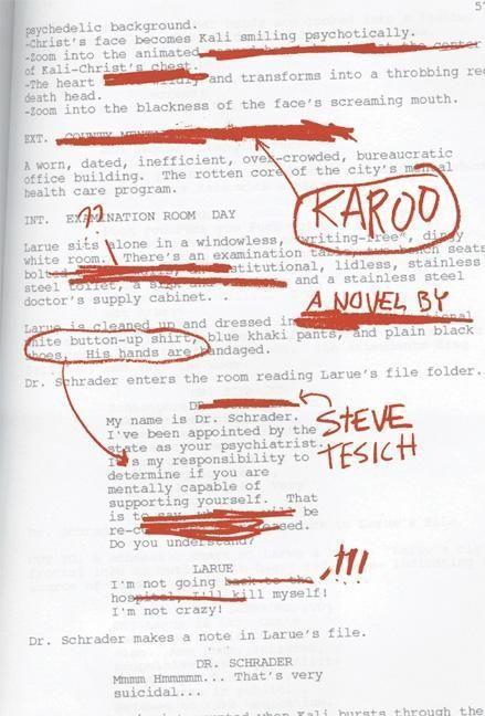 Karoo als Taschenbuch