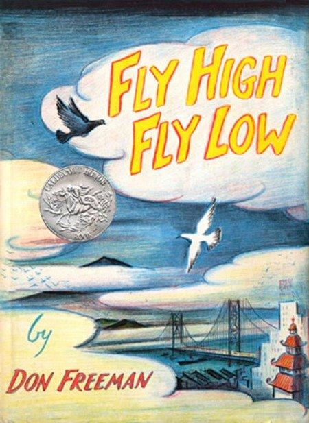 Fly High, Fly Low als Buch