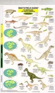 Dinosaurs: North America als Taschenbuch