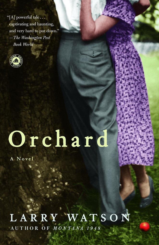 Orchard als Taschenbuch