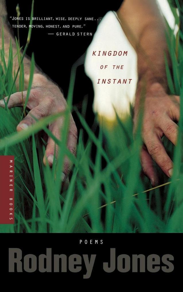 Kingdom of the Instant als Taschenbuch