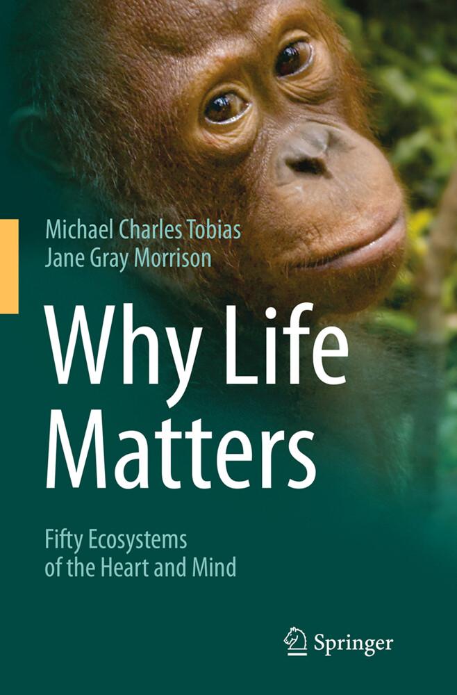 Why Life Matters als Buch von Jane Gray Morriso...