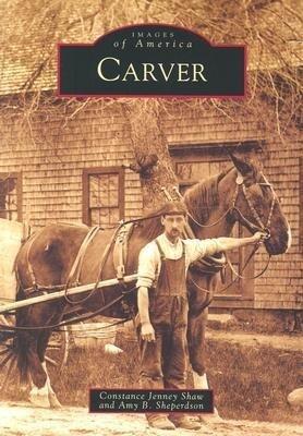 Carver als Taschenbuch