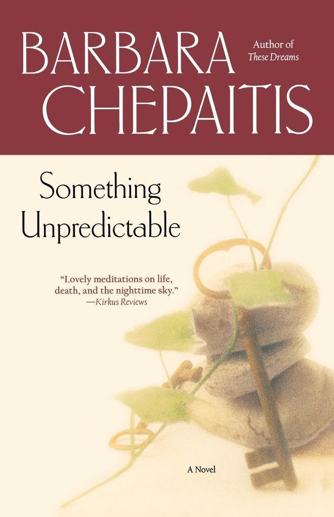 Something Unpredictable als Taschenbuch