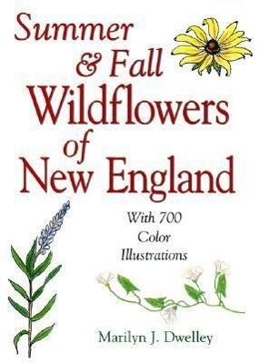 Summer & Fall Wildflowers of New England als Taschenbuch