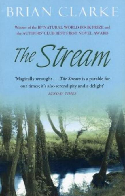 The Stream als Buch