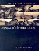 Aggregate of Disturbances