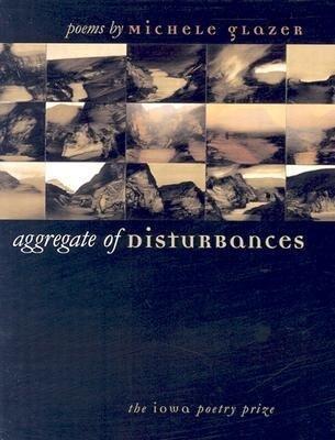 Aggregate of Disturbances als Taschenbuch