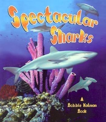 Spectacular Sharks als Taschenbuch