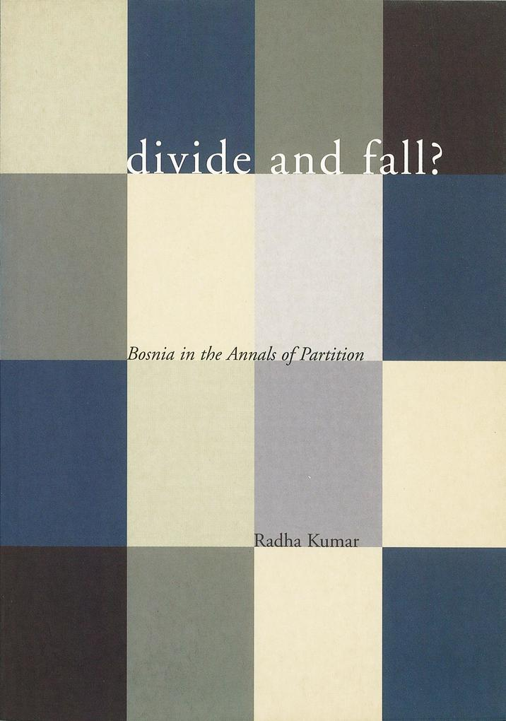 Divide and Fall?: Bosnia in the Annals of Partition als Taschenbuch
