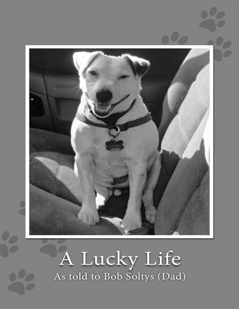 A Lucky Life als eBook Download von Bob Soltys