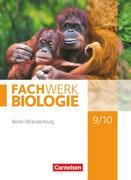 Fachwerk Biologie 9./10. Schuljahr - Berlin/Brandenburg - Schülerbuch