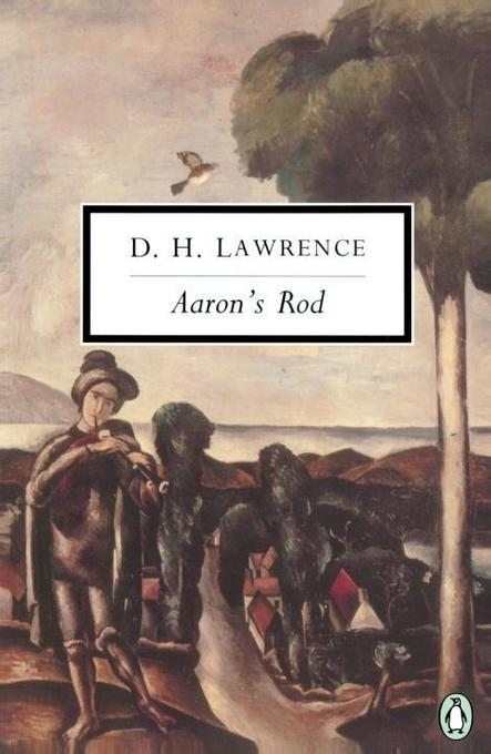 Aaron's Rod: Cambridge Lawrence Edition; Revised als Taschenbuch