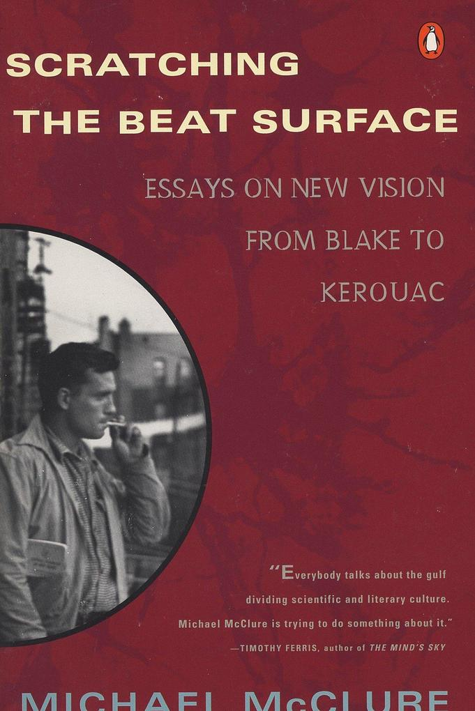 Scratching the Beat Surface: Essays on New Vision from Blake to Kerouac als Taschenbuch