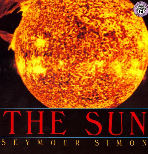 The Sun als Taschenbuch