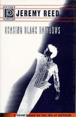 Chasing Black Rainbows als Buch