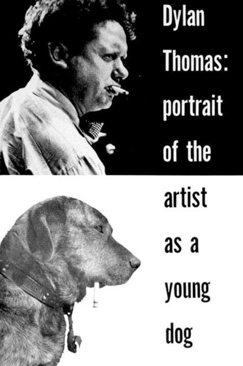 Portrait of the Artist as a Young Dog: Stories als Taschenbuch