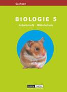 Link Biologie 5. Arbeitsheft. Mittelschule. Sachsen