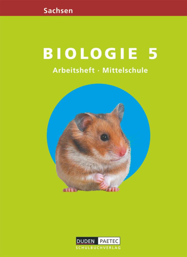 Link Biologie 5. Arbeitsheft. Mittelschule. Sachsen als Buch