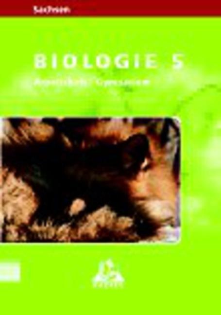 Level Biologie 5. Schuljahr Arbeitsheft. Gymnasium Sachsen als Buch