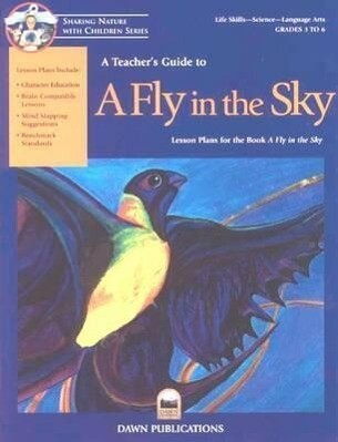 A Teacher's Guide to a Fly in the Sky als Taschenbuch