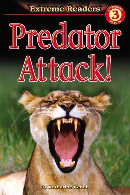Predator Attack! als Taschenbuch