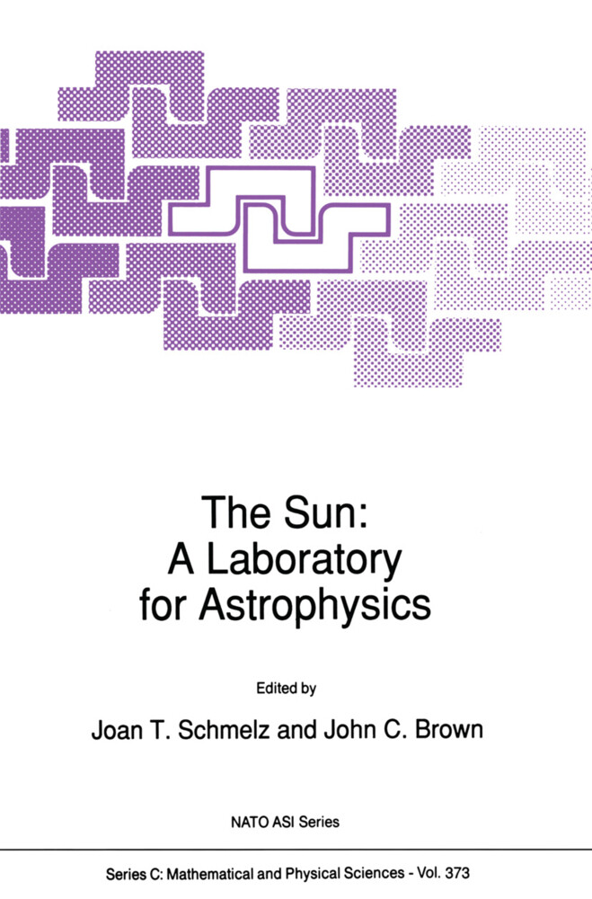 The Sun: A Laboratory for Astrophysics als Buch