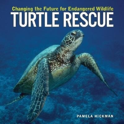 Turtle Rescue: Changing the Future for Endangered Wildlife als Buch