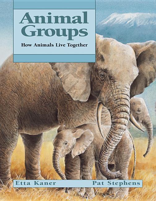 Animal Groups als Taschenbuch