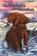 Elephant's Ancestors