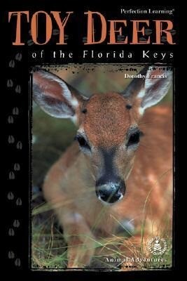 Toy Deer of the Florida Keys als Buch