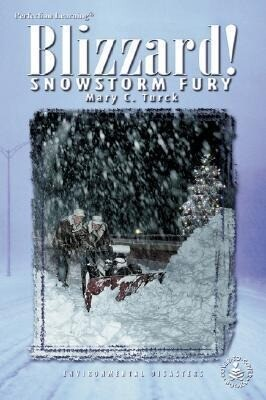 Blizzards! Snowstorm Fury als Buch