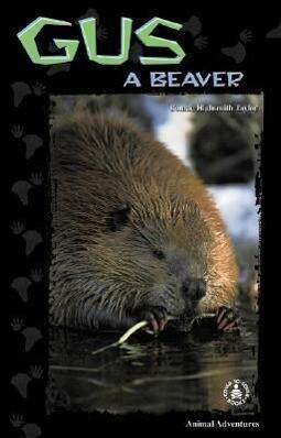 Gus: A Beaver als Buch