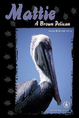 Mattie: A Brown Pelican als Buch