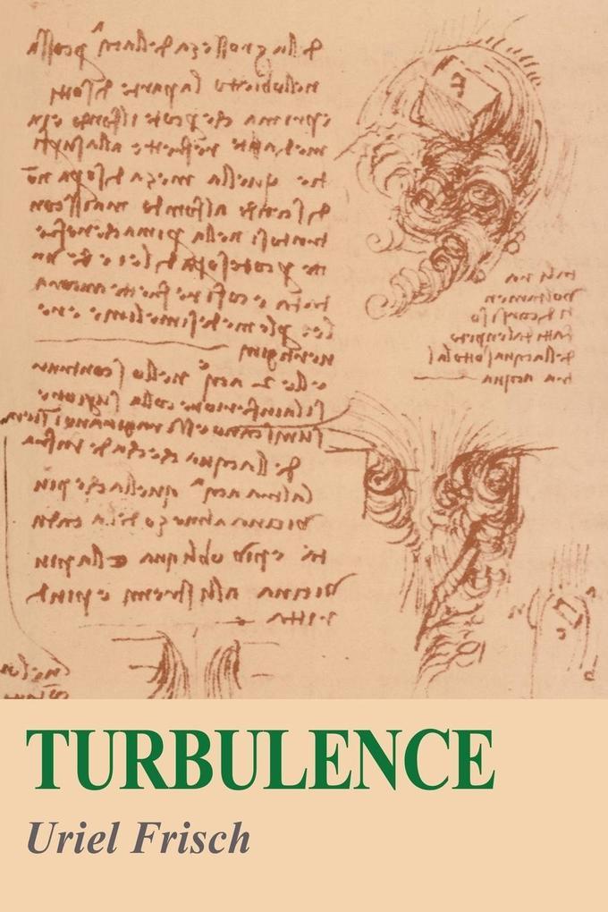Turbulence als Buch