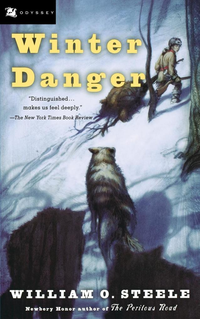 Winter Danger als Taschenbuch