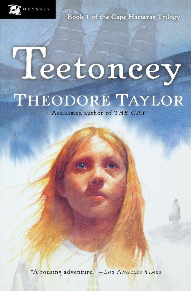 Teetoncey als Taschenbuch