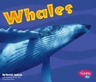 Whales als Buch