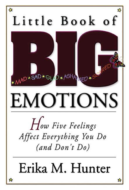 Little Book of Big Emotions: How Five Feelings Affect Everything You Do (and Don't Do) als Taschenbuch