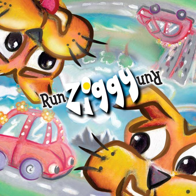 Run Ziggy Run als Buch