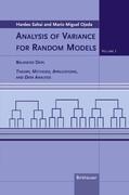 Analysis of Radiance Random Models 1