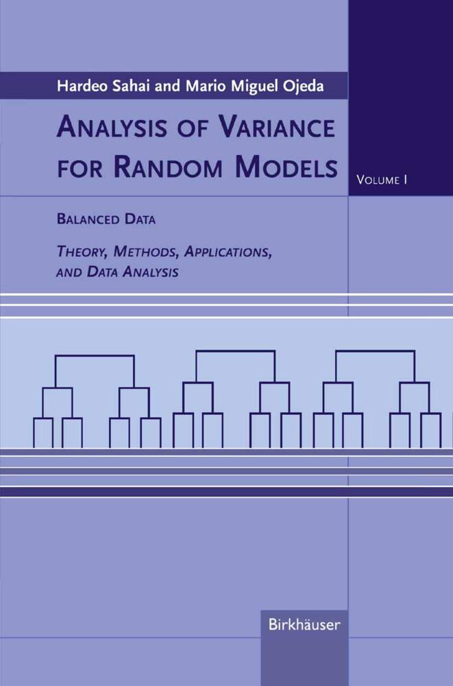 Analysis of Radiance Random Models 1 als Buch