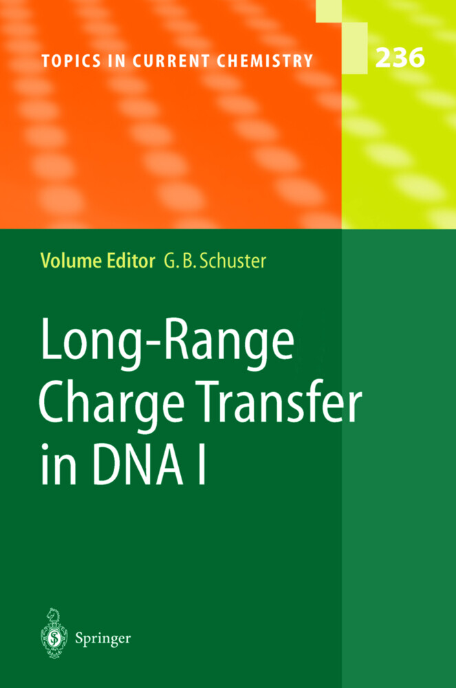 Long-Range Charge Transfer in DNA I als Buch